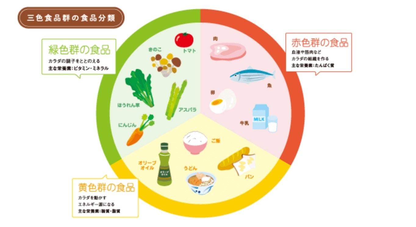 痩せる体質 食事